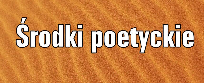 Środki poetyckie