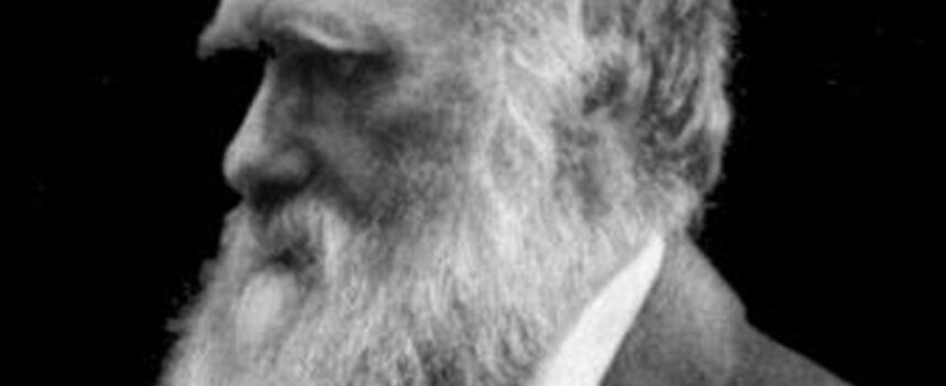 Filozofia II poł. XIX wieku