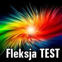 Fleksja TEST