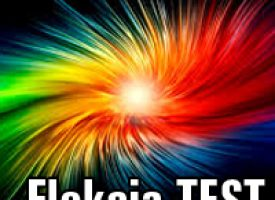 Fleksja TEST