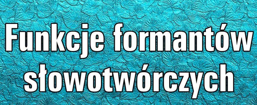 Funkcje formantów słowotwórczych