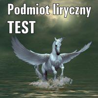 Podmiot liryczny TEST