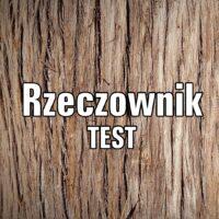 Rzeczownik TEST