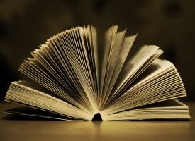 LITERATURE – LITERATURA