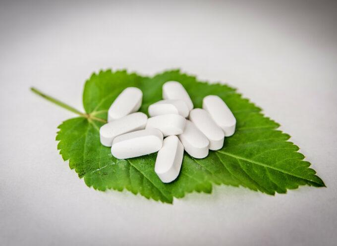 Farmacja – kierunek studiów