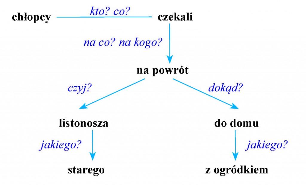drzewko 6