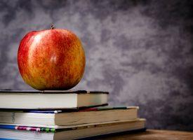 Likwidacja gimnazjów – plusy i minusy reformy edukacji