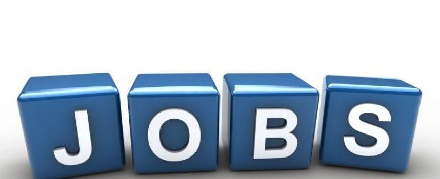 Na jakie oferty pracy można liczyć obecnie?