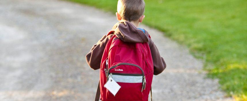 Plecaki szkolne – duży wybór, ale jak wybrać ten odpowiedni?