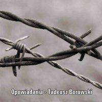 Tadek, bohater Opowiadań Tadeusza Borowskiego – charakterystyka