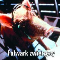 Folwark zwierzęcy Orwella na lekcji