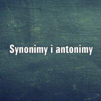Synonimy i antonimy