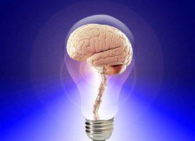 Sekret geniuszy: jak rozruszać mózg