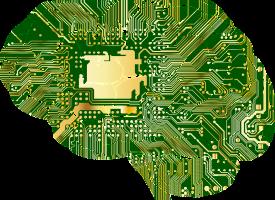 Instrukcja obsługi mózgu