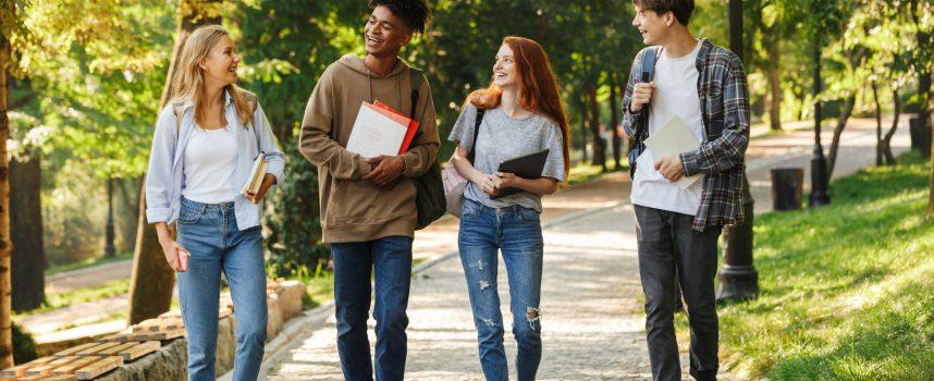 Gdzie można pracować po szkole średniej?