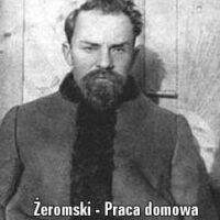 Rewolucja – katastrofa czy szansa? Rewolucja w Nie-Boskiej komedii Zygmunta Krasińskiego i w Przedwiośniu Stefana Żeromskiego.