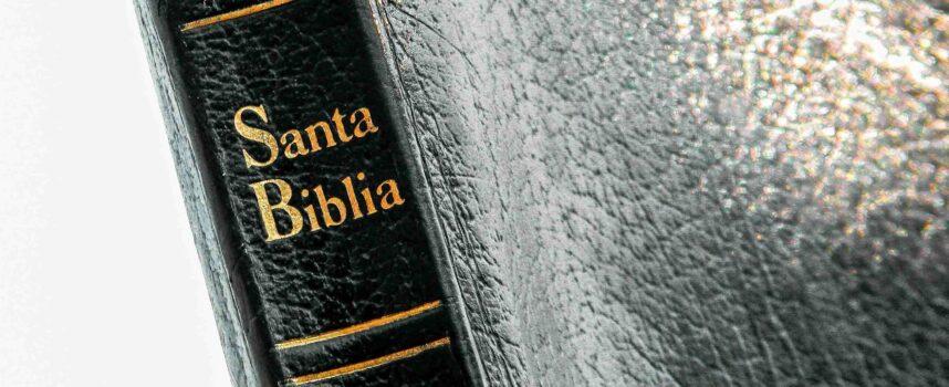 Gatunki biblijne