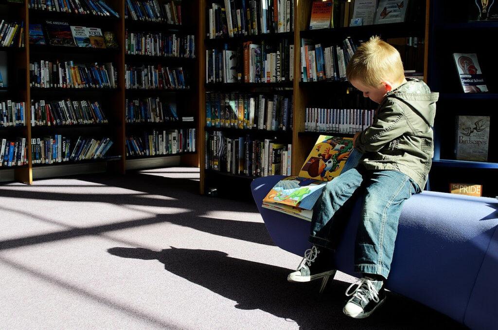 książeczki, biblioteka, chłopiec czyta