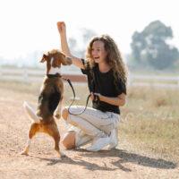 Akcesoria dla psów, które ułatwią tresurę. Poznaj je!