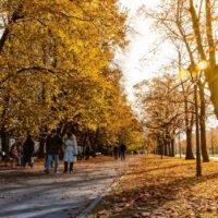 Gdzie spędzać jesień w Warszawie?